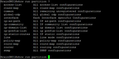 show run partition