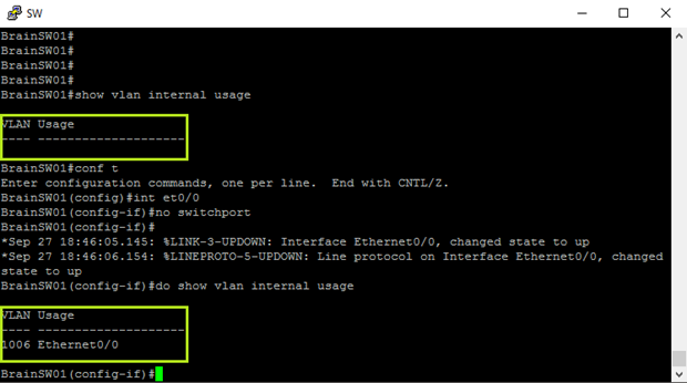 Internal VLAN Usage