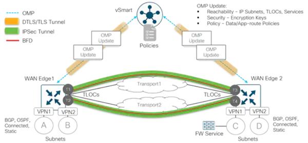 OMP e BFD Cisco SD-WAN